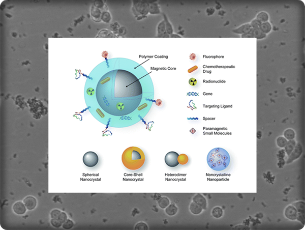 nanotecnología cáncer 4